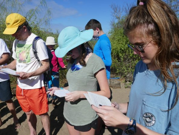 Reading postcards from Galapagos addressed to people around the world