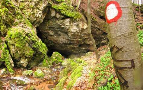 Улаз у Погану пећину, на траси Хомољске трансферзале