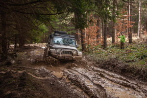 In the Kučaj mud
