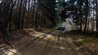 Valkaluci forests