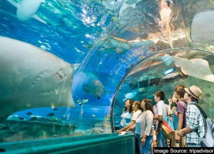 Under water aquarium