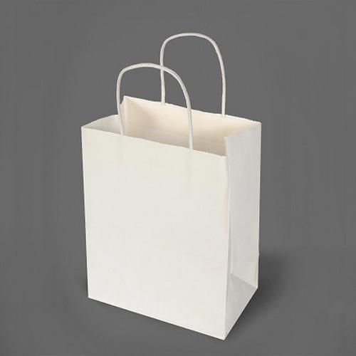 Yessir White Kraft Paper Bag, Rs 8 /piece, Advertising Aid ...