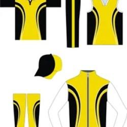 Multicolor Cricket Jersey Design Maker Rs 600 Set Gag Wears Id 17336645748