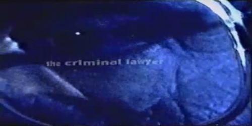 "Criminal Lawyer ""Legal Sunscreen"""