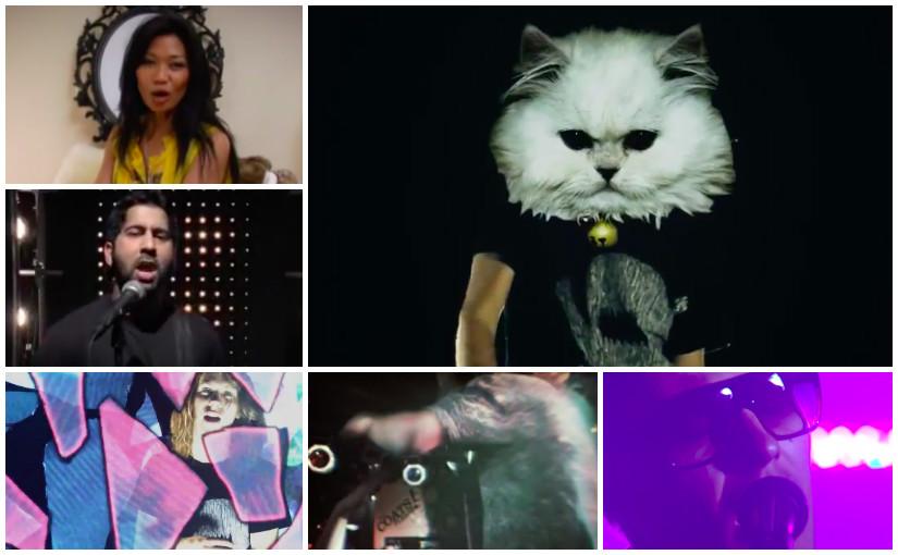 August 2008: Bang Bang Eche, Boh Runga, Bruce Conlon, Cobra Khan, Cut Off Your Hands, Dane Rumble