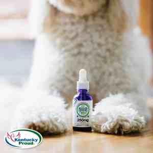 502 FS Oil for Pets 250mg 1oz