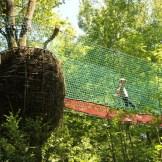 Aventure Land - Le nid -