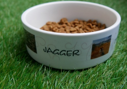 gamelle personnalisée myfujifilm Jagger