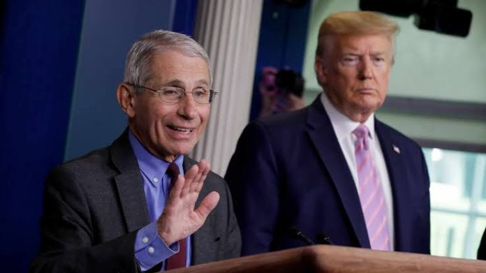 fauci - images 59 - Fauci Ignores The Attack On Him By Trump