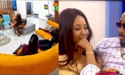 Moment Kiddwaya apologized to Erica after she called him rude on National Tv moment kiddwaya apologized to erica after she called him rude on national tv - 20201130 062220 1606713826936 - Moment Kiddwaya apologized to Erica after she called him rude on National Tv