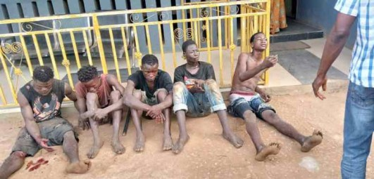 suspected cultists - 5fd889c304972 300x144 - Suspected cultists caught with a dead body while on deadly mission in Ogun State suspected cultists - 5fd889c304972 - Suspected cultists caught with a dead body while on deadly mission in Ogun State