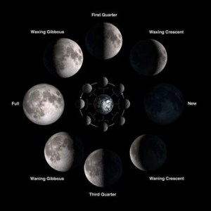 """You need to ascertain the complete """"Chilly"""" MOON OF 2020 in the week moon - nnn 300x300 - You need to ascertain the complete """"Chilly"""" MOON OF 2020 in the week moon - nnn - You need to ascertain the complete """"Chilly"""" MOON OF 2020 in the week"""