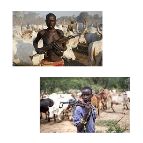 - Image 2021119145317608 - Other Yoruba Governors Should Send Fulani Herdsmen Away In Their Community Just As Akeredolu Have Done, For These Reasons