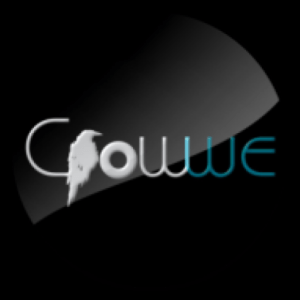Crowwe App Tagged Twitter Wannabe by Nigerians Receive Negative Reviews on Playstore crowwe - unnamed 300x300 - Crowwe App Tagged Twitter Wannabe by Nigerians Receive Negative Reviews on Playstore crowwe - unnamed - Crowwe App Tagged Twitter Wannabe by Nigerians Receive Negative Reviews on Playstore