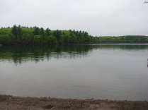 Walden Pond in Massachusetts