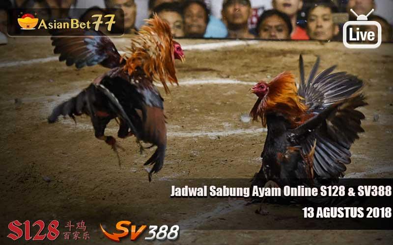 Jadwal Sabung Ayam Online S128 dan SV388 13 Agustus 2018 - Agen Sabung Ayam Asianbet77