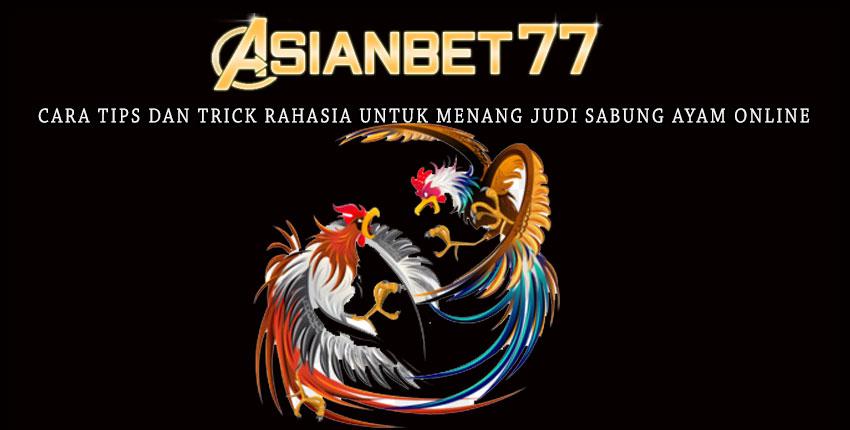 Cara Tips Dan Trick  Rahasia Untuk Menang Judi Sabung Ayam Online - Asianbet77
