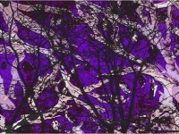5150 Purple Forest