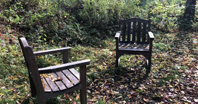 Pine Hollow Arboretum, Albany