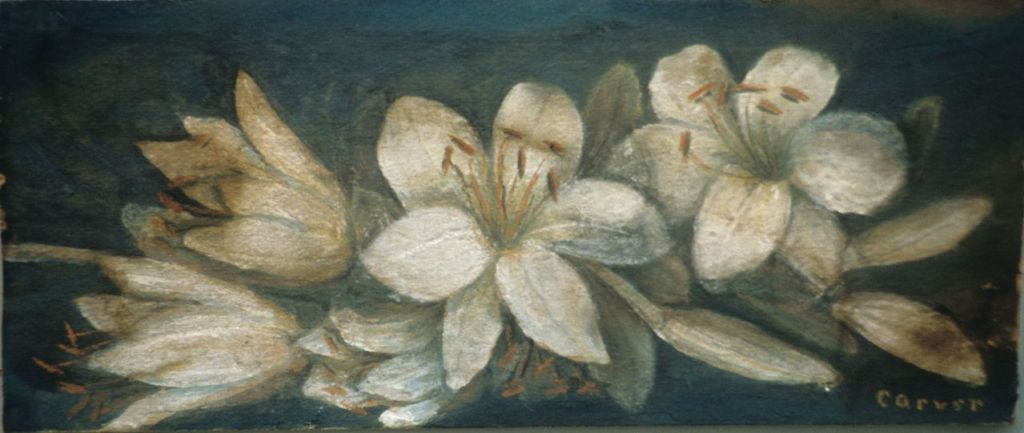 A painting of flowers that George Washington Carver did.