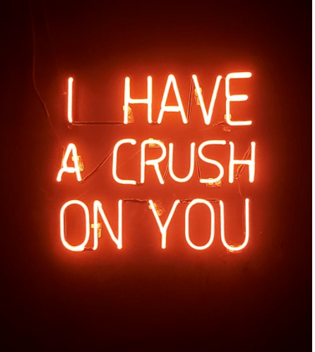 I have a crush on you neon sign.