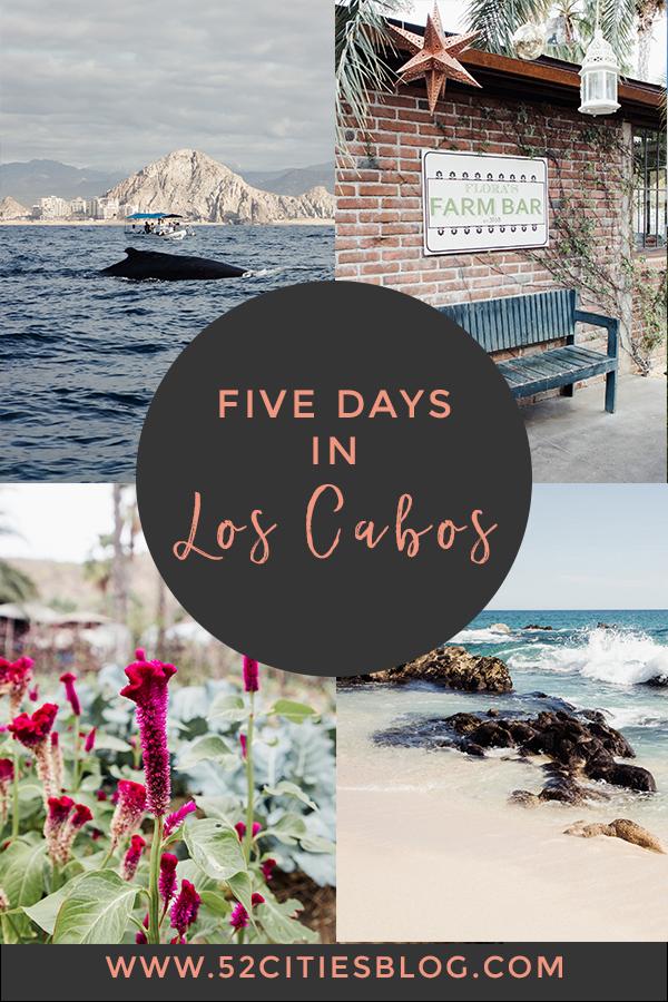 Five days in Los Cabos