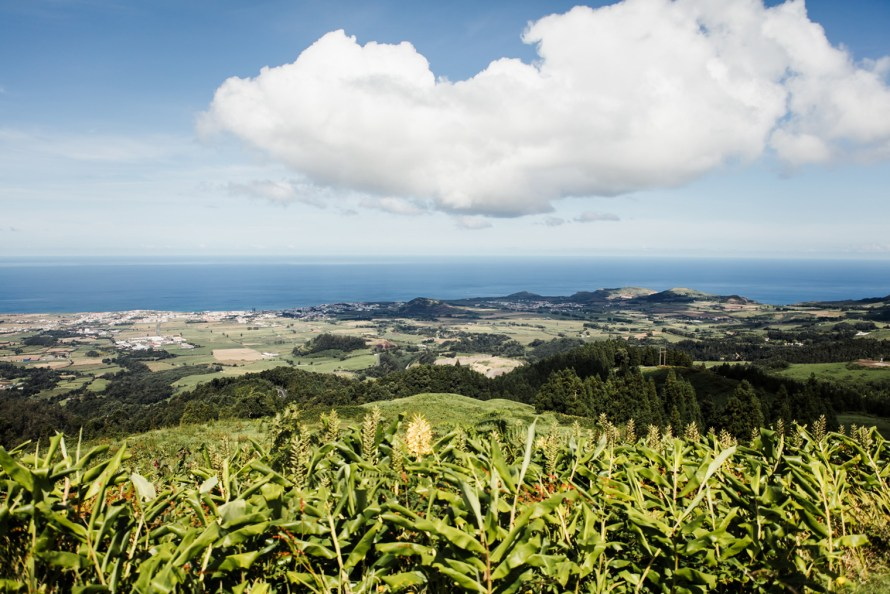 View of the shore on Sao Miguel Azores