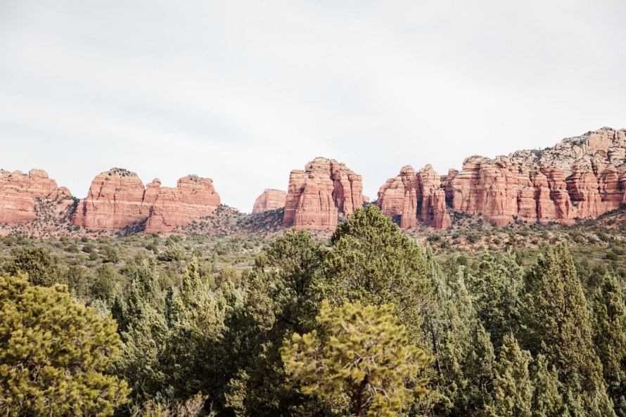 Sedona red rocks and trees