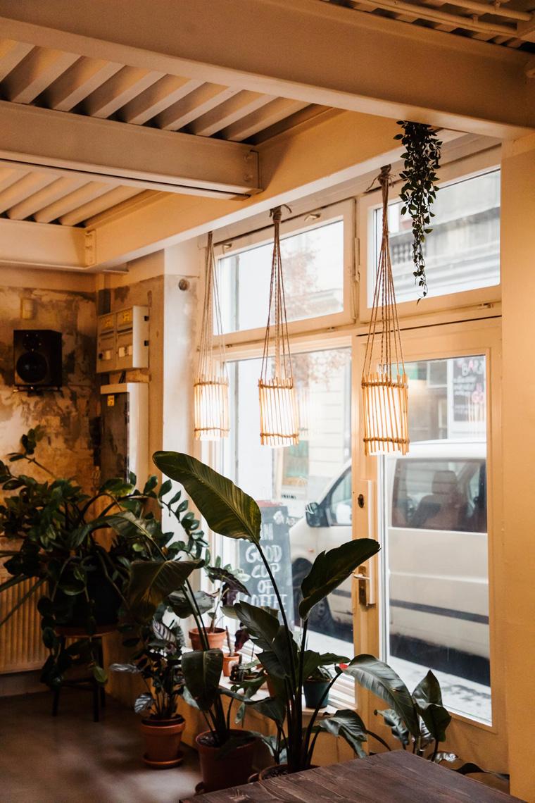 Dorado Cafe windows