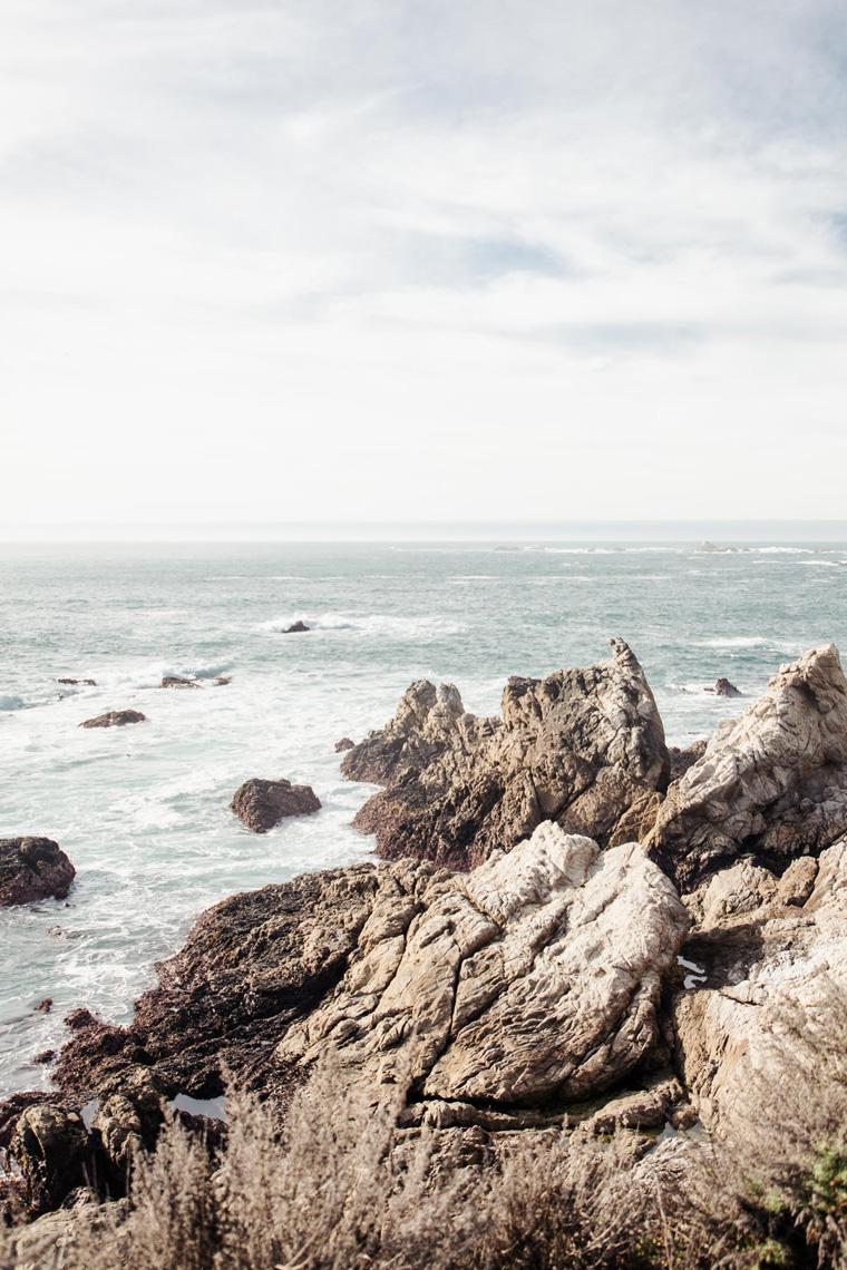 Point Lobos rocky shore