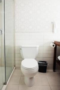 Lismore Hotel bathroom