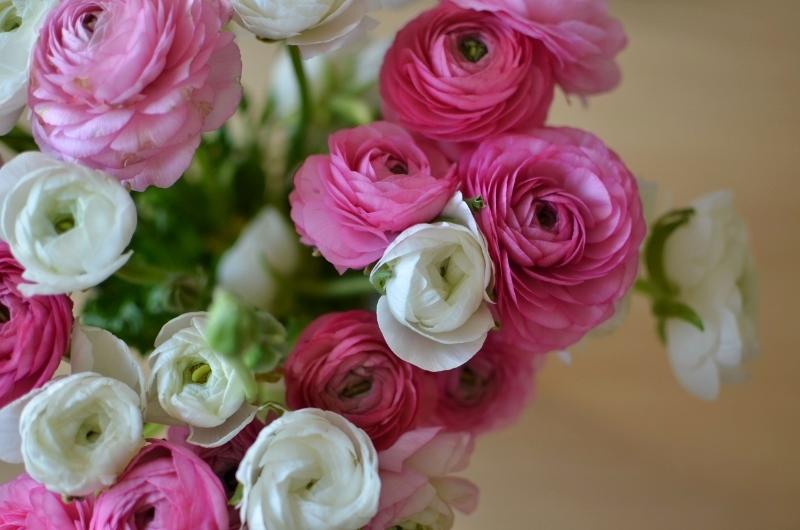 Bouquet d'anniv