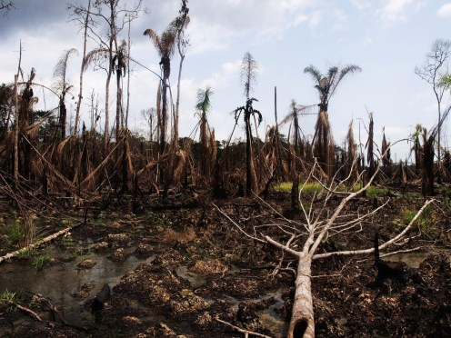 The Niger Delta through the eyes of George Osodi
