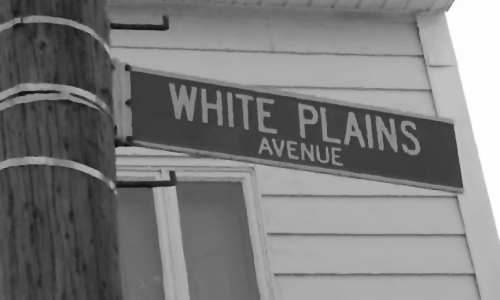 whiteplains-500x300