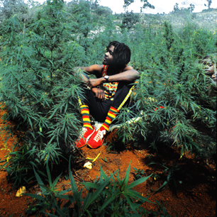 petertosh-306-1367006516