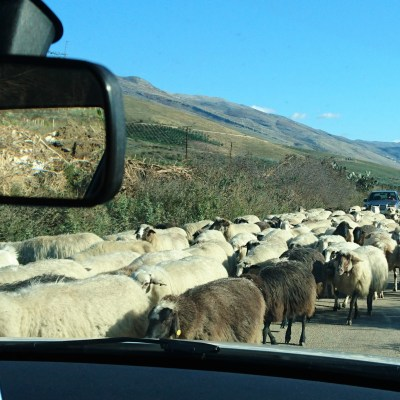 Traffic - Albania