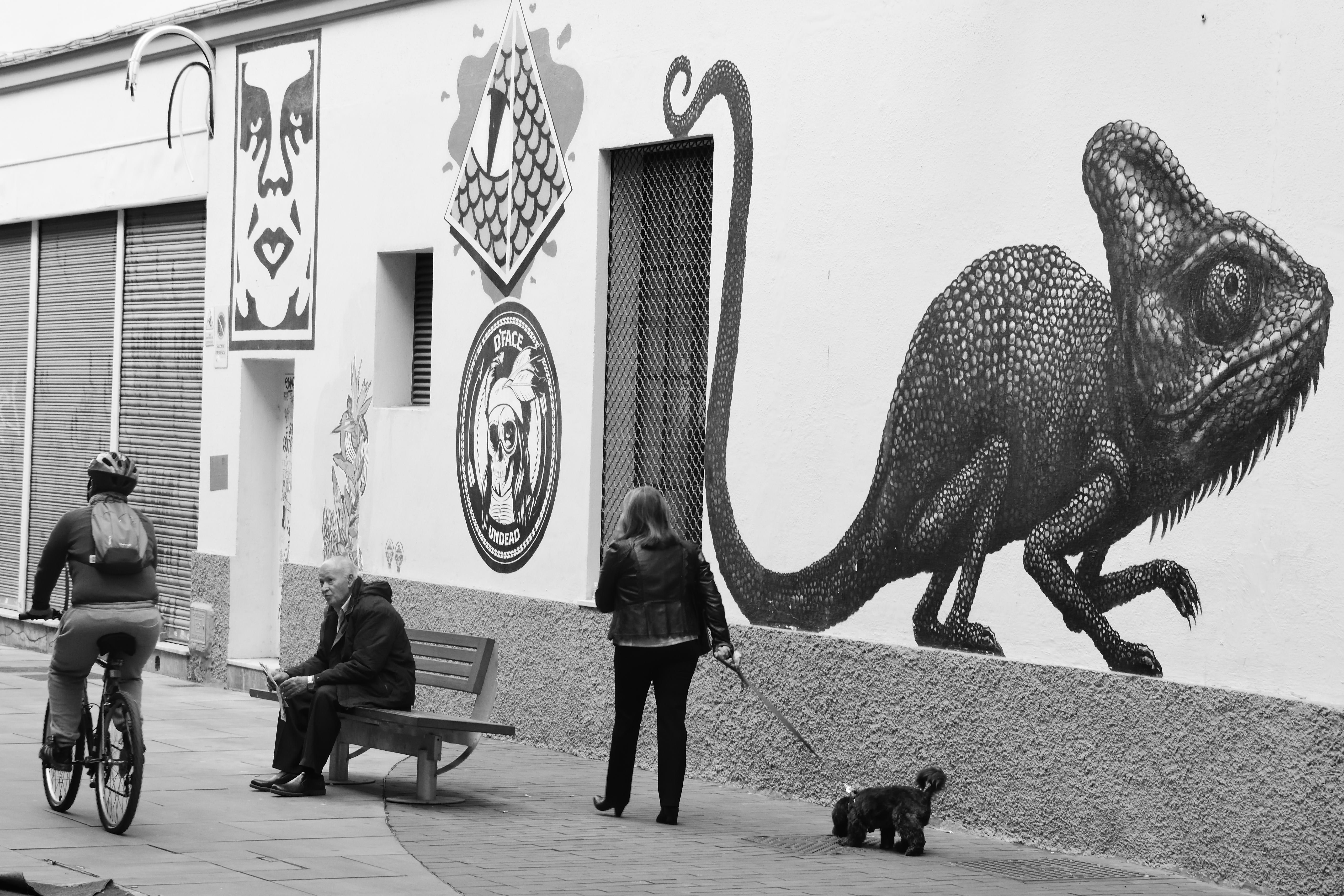 Málaga - Spain