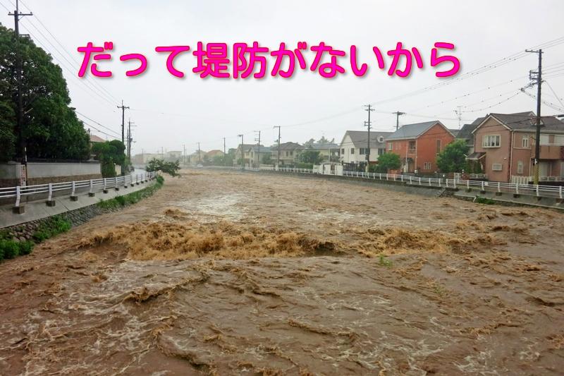 姉川は氾濫する