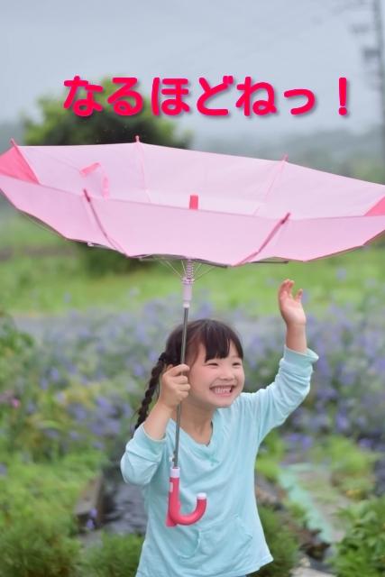サーカス(circus) 今話題の二重傘・逆さ傘を確認するのだ!