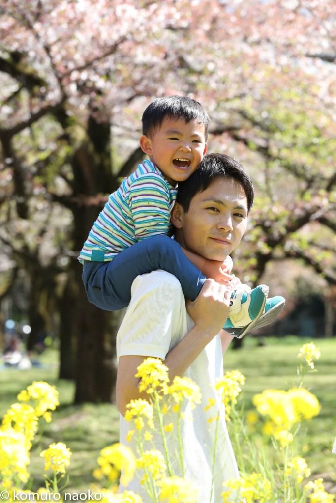 こむの木家族写真桜