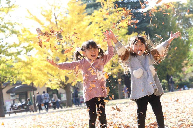 こむの木家族写真撮影会武蔵国分寺公園
