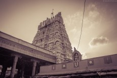 Main Tower/Gopuram - Parthasarathy Temple