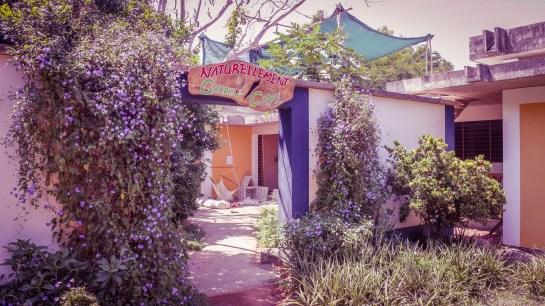 Naturellement Garden Cafe