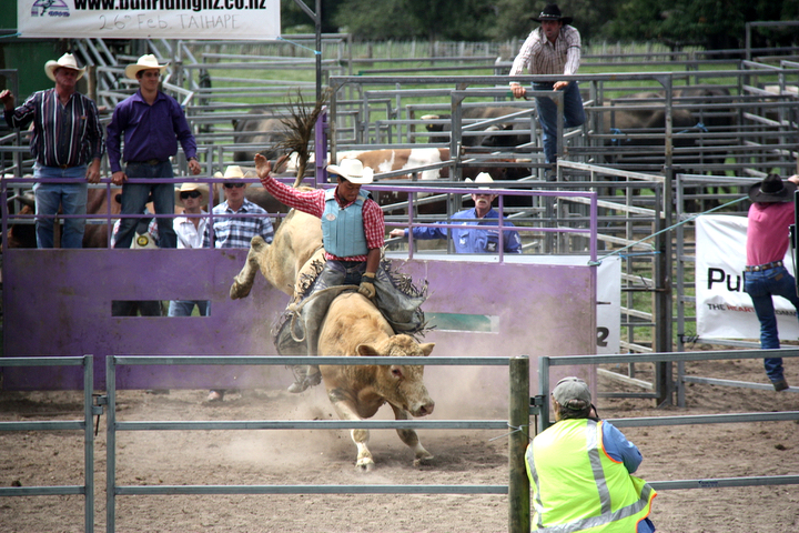 58GradNord - Elternzeit in Neuseeland - Bull Riding Taihape