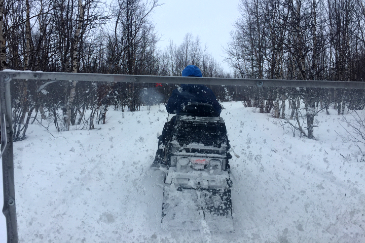58 Grad Nord - Kungsleden im Winter - Skooterfahrt