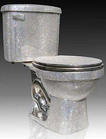 Expensive Toilet!