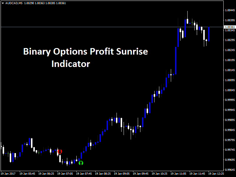 Binary options profit logic