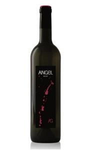 angel-negre