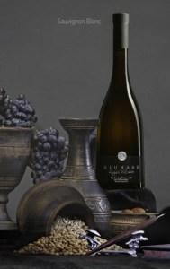 Los Balancines Alunado Sauvignon Blanc