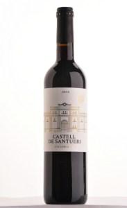 Castell de Santueri Negre
